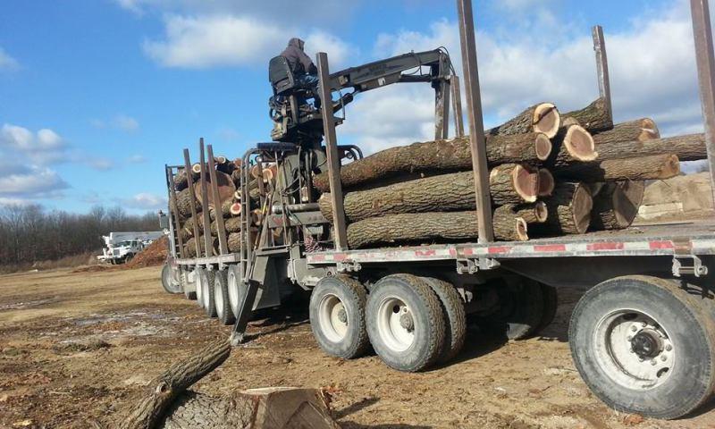 Hard plowing timber